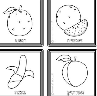 http://www.etze.co.il/images/stories/maarechet/yosrim/lehadpasa/2010/nov/memory_fruits_vegs_gan_bw2.pdf